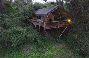 Taranga-Safari-Lodge-DH5